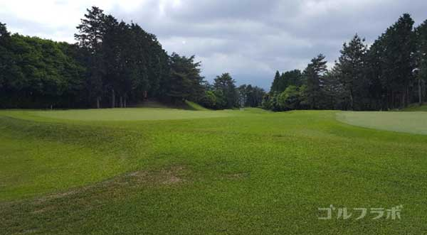 沼津ゴルフクラブの愛鷹2ホールのグリーン