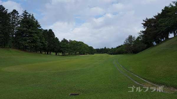 沼津ゴルフクラブの愛鷹3ホールのレディースティ