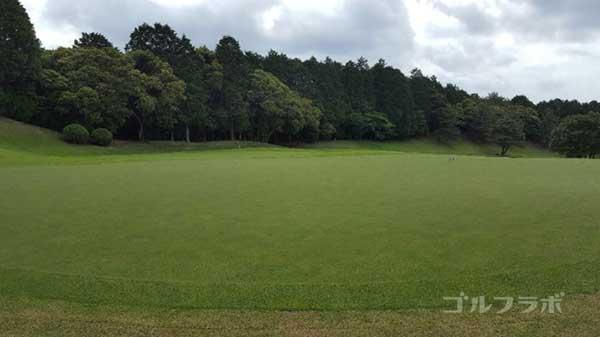 沼津ゴルフクラブの愛鷹4ホールのグリーン