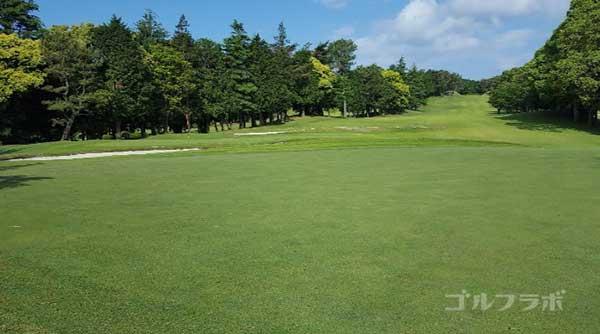 沼津ゴルフクラブの愛鷹7ホールの3打目