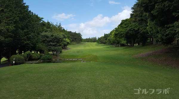 沼津ゴルフクラブの愛鷹8ホールのティーグラウンド