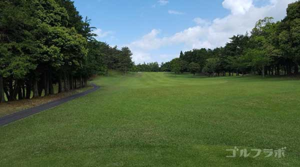 沼津ゴルフクラブの愛鷹8ホールのレディースティ