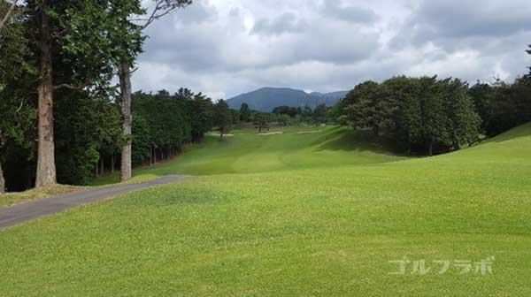 沼津ゴルフクラブの愛鷹9ホールのレディースティ