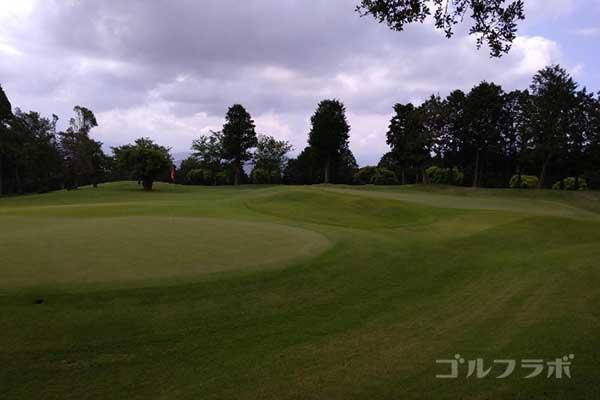 沼津ゴルフクラブの伊豆7ホールのグリーン