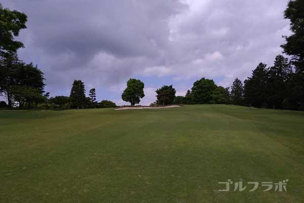 沼津ゴルフクラブの伊豆9ホールの3打目