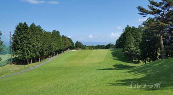 沼津ゴルフクラブの駿河1ホールのレディースティ