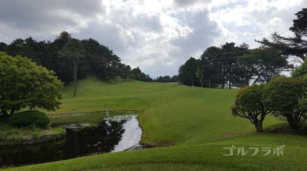 沼津ゴルフクラブの駿河7ホールのレディースティ