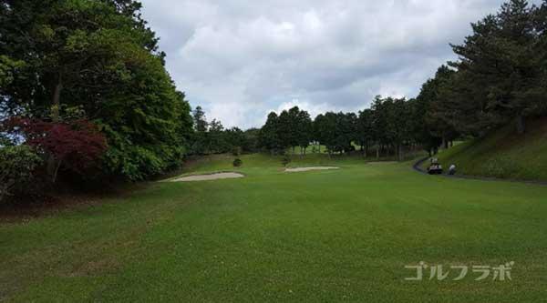 沼津ゴルフクラブの駿河8ホールのレディースティ