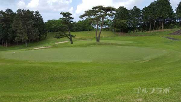 沼津ゴルフクラブの駿河9ホールのグリーン
