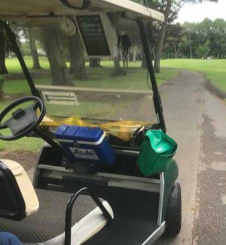 太平洋クラブ益PGAコースのカート