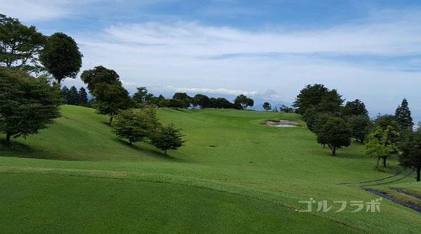 凾南ゴルフ倶楽部の11番ホールのレディースティ