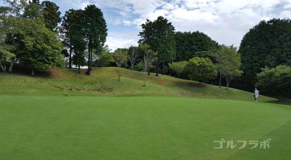 凾南ゴルフ倶楽部の12番ホールのグリーン