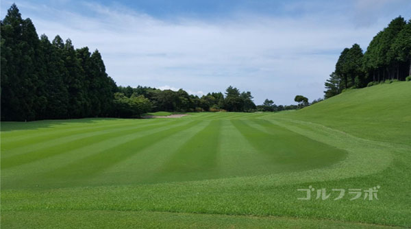 凾南ゴルフ倶楽部の15番ホールのレディースティ