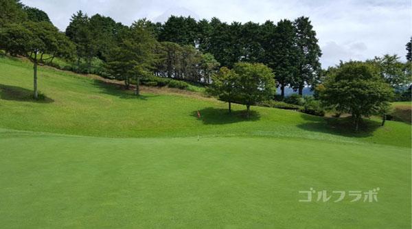 凾南ゴルフ倶楽部の16番ホールのグリーン