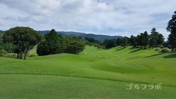 凾南ゴルフ倶楽部の18番ホールのティーグラウンド