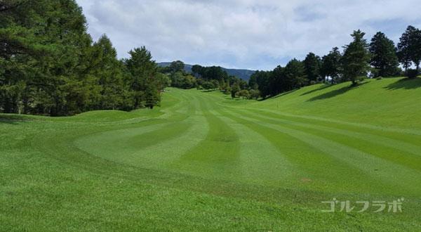 凾南ゴルフ倶楽部の18番ホールのレディースティ