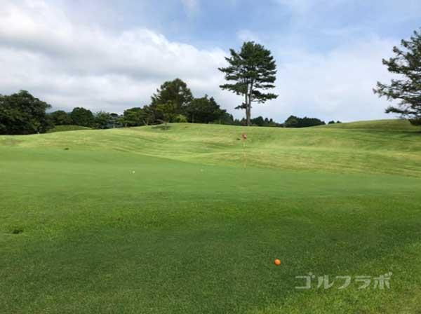 凾南ゴルフ倶楽部の6番ホールのグリーン