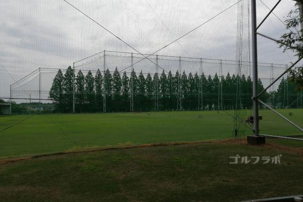 柳橋ゴルフ練習場の周辺の木