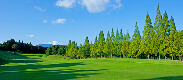 WITHIN STYLE ゴルフクラブ