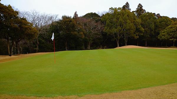 房総カントリークラブ房総ゴルフ場の7番ホールのグリーン
