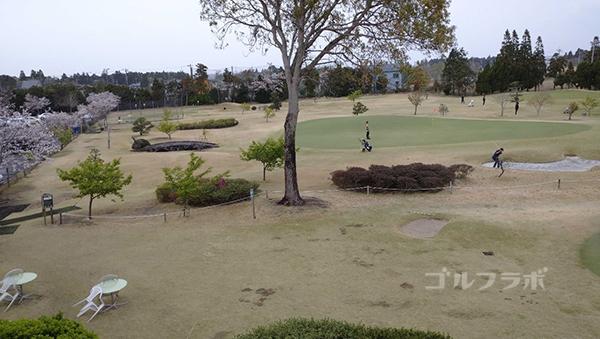 ダイナミックゴルフ茂原のショートコース