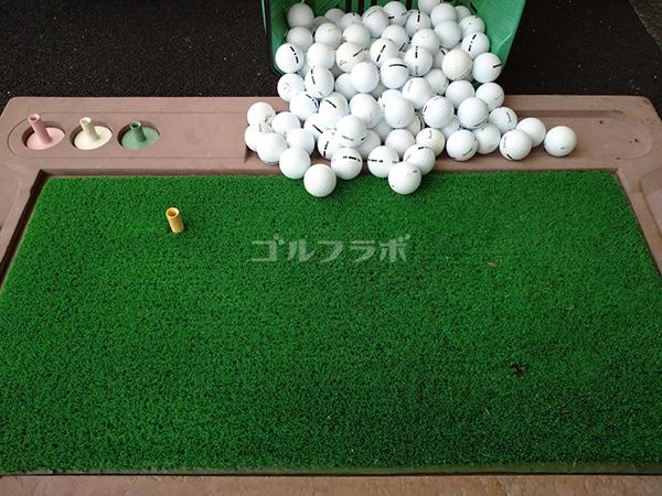 ダイナミックゴルフ茂原のマット