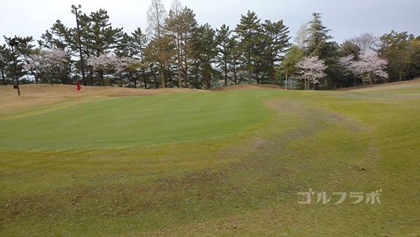 市原ゴルフクラブ柿の木台コースの10番ホールのグリーン