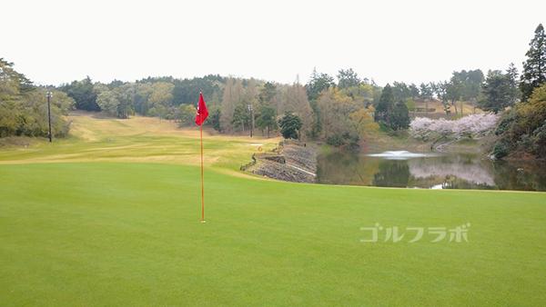 市原ゴルフクラブ柿の木台コースの18番ホールのグリーン