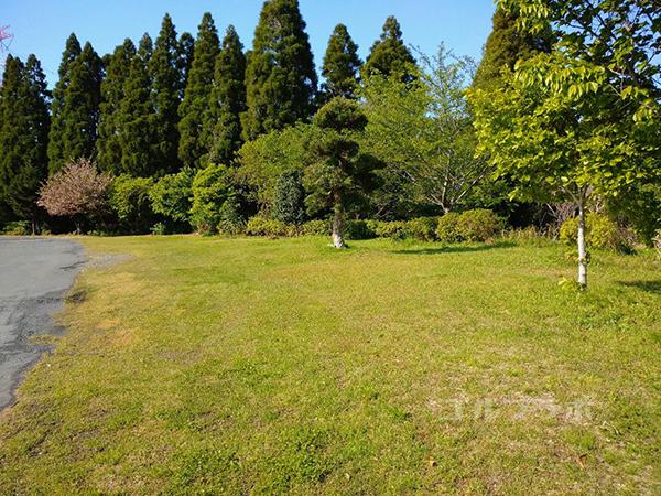 ジョイバードゴルフ練習場の横の芝生