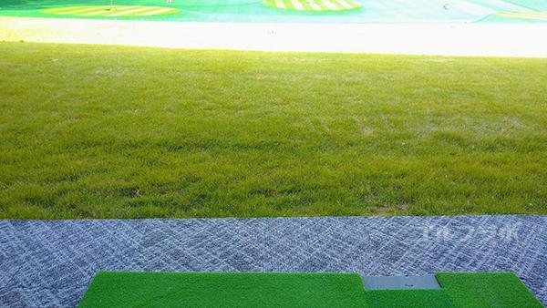 フジゴルフパークの芝生