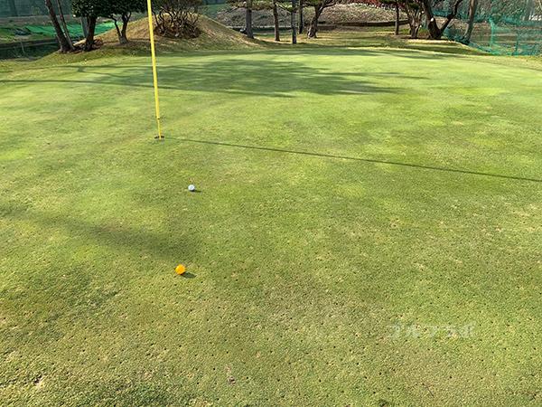 湘南グリーンゴルフの2番ホールのグリーン