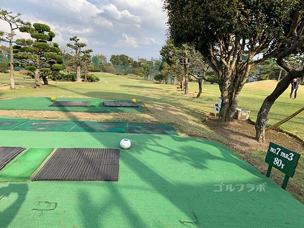 湘南グリーンゴルフの7番ホール