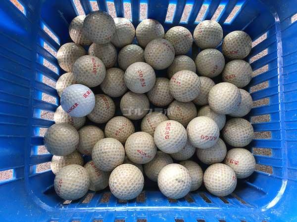 西原ゴルフガーデンのボール