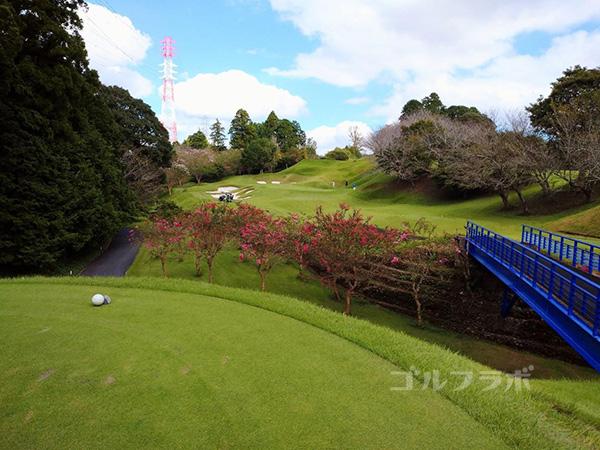 カレドニアン・ゴルフクラブの17番ホール